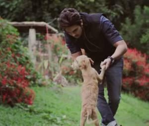 """Luan Santana usou o clipe """"Cê Topa"""" para ajudar a promover a adoção de animais"""