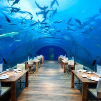 Os 10 restaurantes mais bizarros do mundo! Confira os lugares mais inusitados para se comer