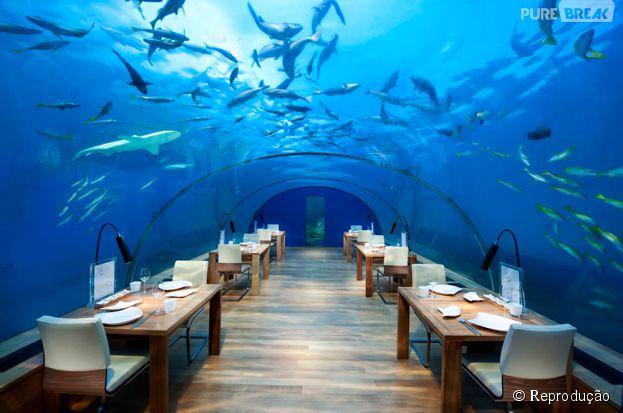 Ithaa Undersea (Ilhas Maldivas) - A 5 metros de profundidade, em pleno Oceano Índico, você faz aquela boquinha na companhia de peixes e tubarões