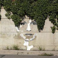 Conheça artes urbanas que interagem com a natureza! Obras de artes que valem a pena conferir