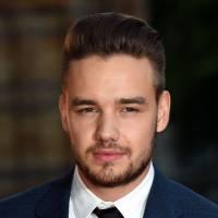 Liam Payne, do One Direction, é acusado de homofobia e se defende no Twitter