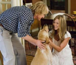 """Quando tem cachorro no meio, como em """"Marley & Eu"""", pode ter certeza que até os mais insensíveis vão cair no choro!"""