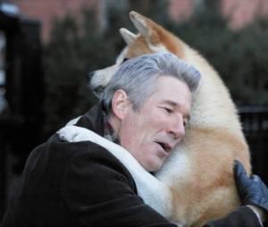 """O que a gente falou sobre os cachorros? Em """"Sempre ao Seu Lado"""", também vai ficar difícil conter a emoção"""