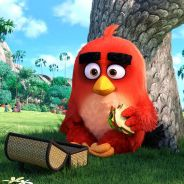 """De """"Angry Birds - O Filme"""": novo trailer mostra luta dos protagonistas contra os invasores da ilha"""