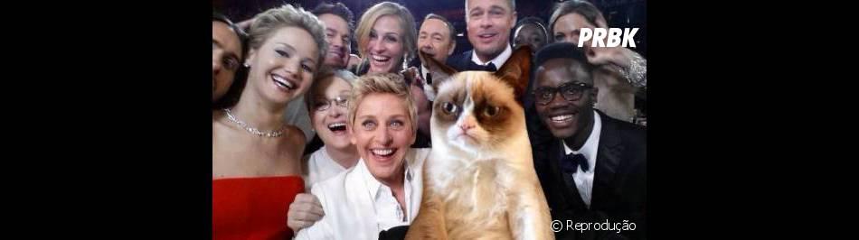 tem espaço para todos os memes da internet na foto do Oscar, até para esse gato