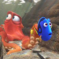 """Animação """"Procurando Dory"""" lidera bilheteria do final de semana nos EUA!"""