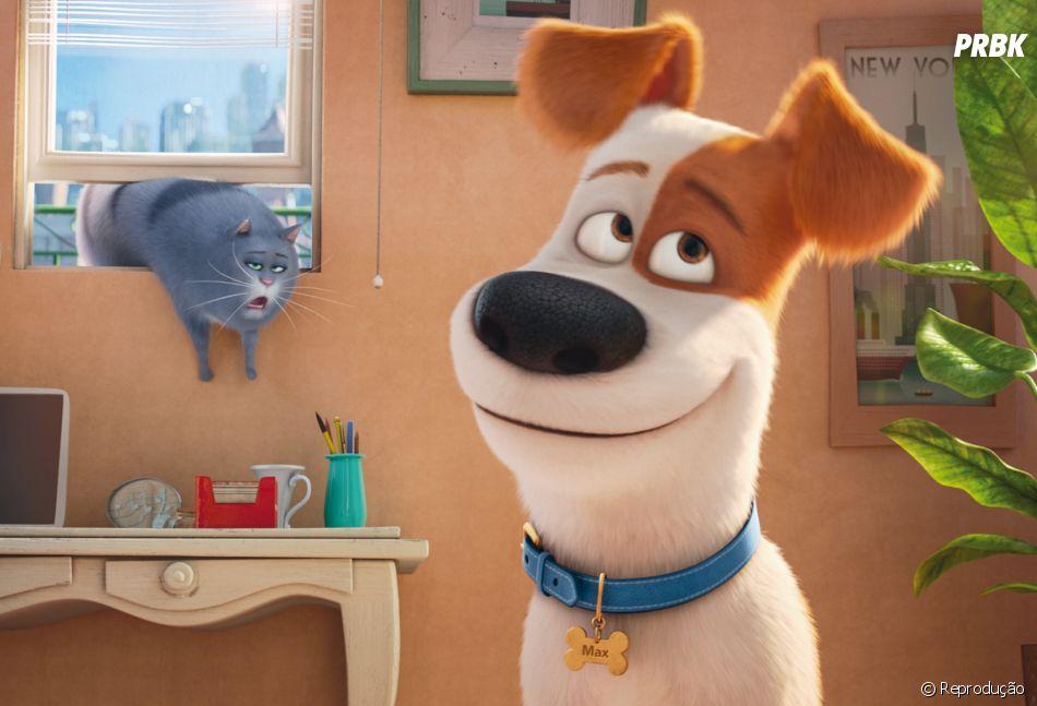 """A animação """"Pets: A Vida Secreta dos Bichos"""" aparece em 5ª lugar no ranking de bilheteria dos EUA no fim de semana"""
