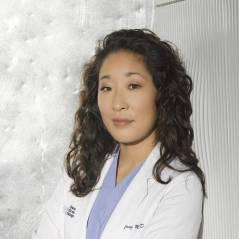 """Na 10ª temporada de """"Grey's Anatomy"""": Cristina se despede da série!"""