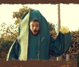 Lucas Lucco se veste de cacto e grava uma série de vídeos engraçados para os fãs no Instagram