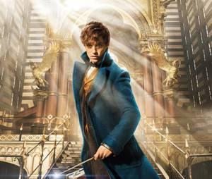 """Animais Fantásticos e Onde Habitam"" tá deixando os fãs de ""Harry Potter"" morrendo de ansiedade"