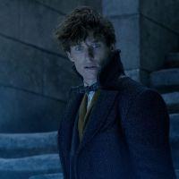 """Saiu o trailer final de """"Animais Fantásticos: Os Crimes de Grindelwald"""" e nós estamos surtando!"""