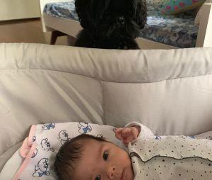 Clara Maria, filha de Tatá Werneck e Rafael Vitti, já tem um melhor amigo!