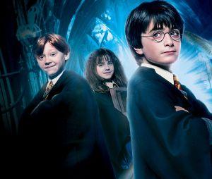 """""""Harry Potter"""": faça o teste e descubra se você lembra o nome dos seres da saga"""