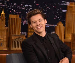 Harry Styles: cantor completa 27 anos nesta segunda (1)