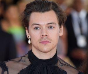 Harry Styles: adivinhe qual é a música neste quiz