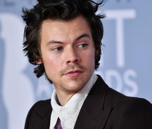 Harry Styles está no filme Don't Worry Darling, de Olivia Wilde