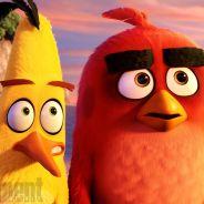 """De """"Angry Birds: O Filme"""": novas fotos divulgadas mostram as aves mais fofinhas de todos os tempos!"""