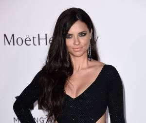 Adriana Lima, também brasileira, faturou a mesma quantia de Cara Delevingne no ano de 2015