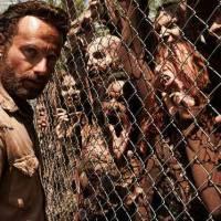 """Série """"The Walking Dead"""" ou Black Friday? 5 semelhanças entre os dois que você nunca reparou!"""