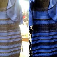 Vestido é azul e preto? Gato está subindo ou descendo? Veja as 5 ilusões óticas que mais bombaram!