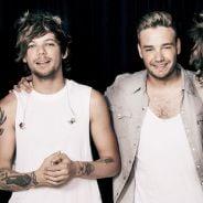 One Direction e Astrologia: descubra a música da boyband que mais combina com seu signo!