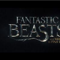 """De """"Animais Fantásticos e Onde Habitam"""": 1º trailer traz toda a mágica de """"Harry Potter"""" de volta!"""