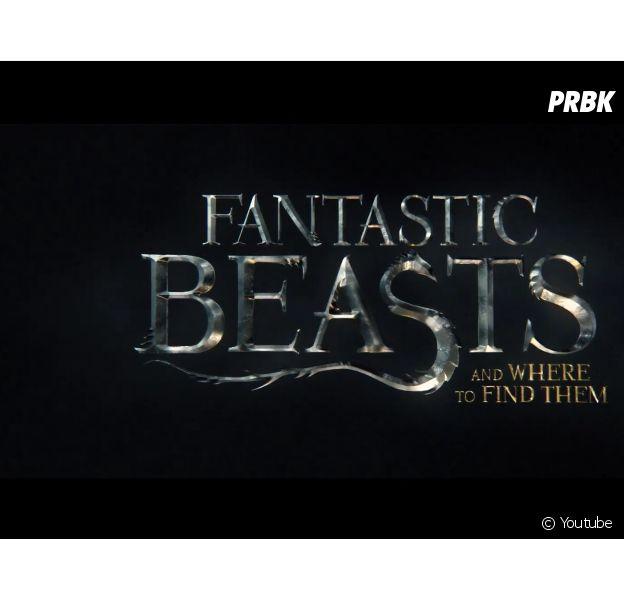 """O filme """"Animais Fantásticos e Onde Habitam"""" é um spin-off de """"Harry Potter""""!"""