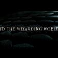 """De """"Animais Fantásticos e Onde Habitam"""": o filme é dirigido por David Yates, o mesmo de """"Harry Potter e as Relíquias da Morte"""""""