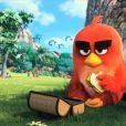 """Os passarinho nervosos de """"Angry Birds"""" chegam aos cinemas no dia 12 de maio de 2016"""