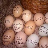 Ovos de Páscoa estão caros? Veja 7 coisas que você pode comprar com o mesmo valor!