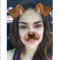Kéfera Buchmann, Liam Payne, Dulce Maria e mais famosos com o filtro de cachorro no Snapchat!