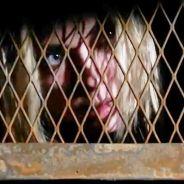 """Em """"Pretty Little Liars"""": na 7ª temporada, Hanna terá fim trágico? Produtora fala em mortes!"""