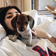 Kylie Jenner apresenta Penny, sua nova cadela de estimação. Veja foto!
