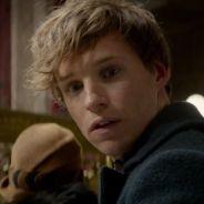 """De """"Animais Fantásticos e Onde Habitam"""": novo clipe cria disputa entre Hogwarts e Ilvermorny!"""