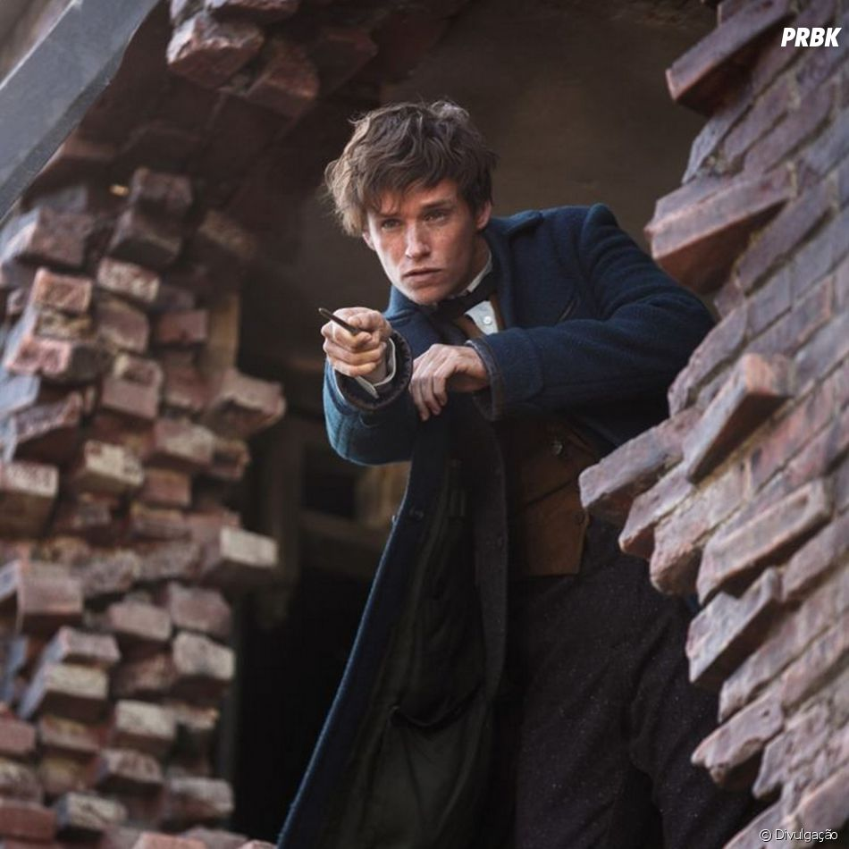 """Animais Fantásticos e Onde Habitam"" é o primeiro spin-off de ""Harry Potter"""