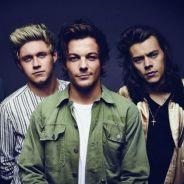 One Direction: Harry Styles, Liam Payne, Niall Horan, Louis Tomlinson e o que rolou após o hiato!