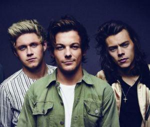 Após a pausa da boyband, os meninos do One Direction investiram em projetos solo