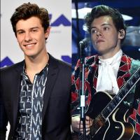 Shawn Mendes assiste show de Harry Styles no Canadá e é tietado por fãs