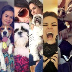 """Maisa Silva, Anitta, Tatá Werneck e mais: veja 12 famosas que são """"mães de pet""""!"""