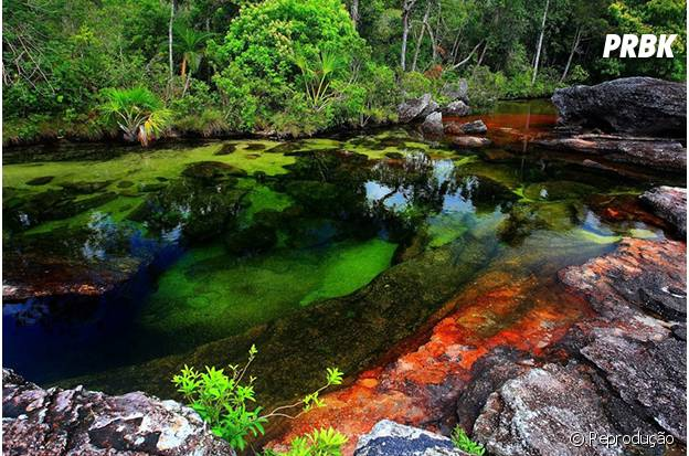 Rio colorido da Colômbia ficou famoso no mundo!