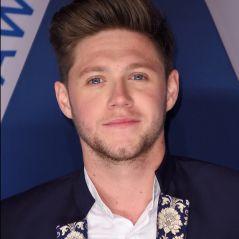 AMA 2017: Niall Horan, Shawn Mendes, Nick Jonas, Lady Gaga e mais performances são confirmadas