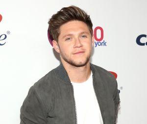 Niall Horan anuncia que entrará em pausa após fim da sua turnê