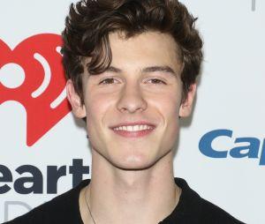 "Shawn Mendes animou os fãs no Twitter ao anunciar ""If I Can't Have You"" como música nova"