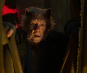 """""""Cats"""": musical ganha live-action com vários atores famosos"""