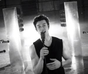 Shawn Mendes dá ótima resposta para fã que pede ajuda para se assumir bissexual