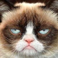 7 atitudes mais irritantes que as pessoas têm nas redes sociais