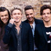 A comemoração de 10 anos do One Direction vai acontecer, de acordo com jornal britânico