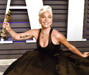 Lady Gaga: descubra qual fanfic da cantora você contaria