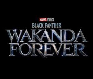 """Sequência de """"Pantera Negra"""", da Marvel, se chamará """"Wakanda Forever"""" e estreia em 2022"""