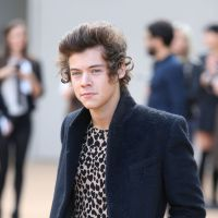 Harry Styles, do One Direction, pode virar ator de Hollywood muito em breve!